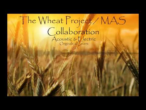 The Wheat Project - Devil Woman (Cover)