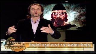 Lingvistii UNGURI arunca in aer Academia Romana