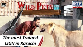 The most Trained LION | Wild Pets with Aun 20th October 2019