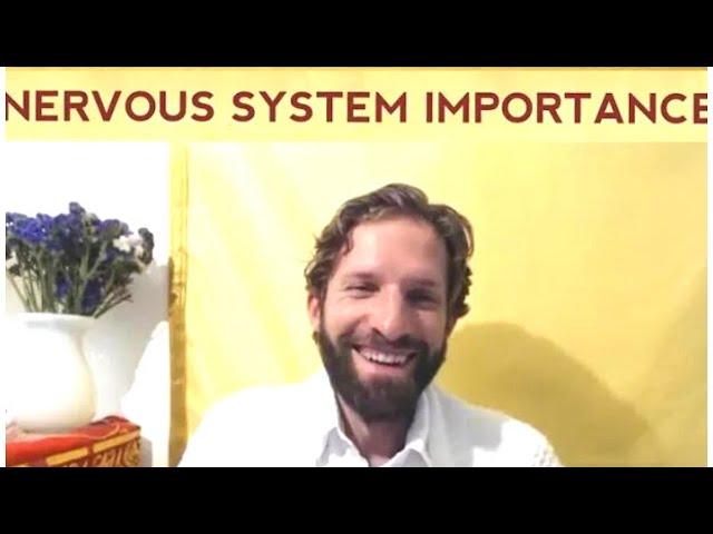 Nervous System Importance for Consciousness Integration