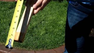 How much and how often you should water your lawn.