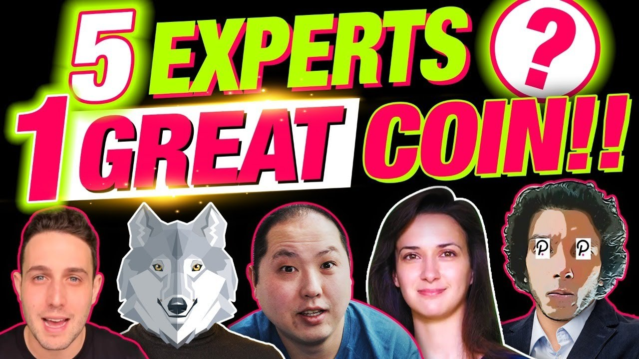 5 CRYPTO LEADING EXPERTS PICK THE 1 ULTIMATE ALTCOIN!