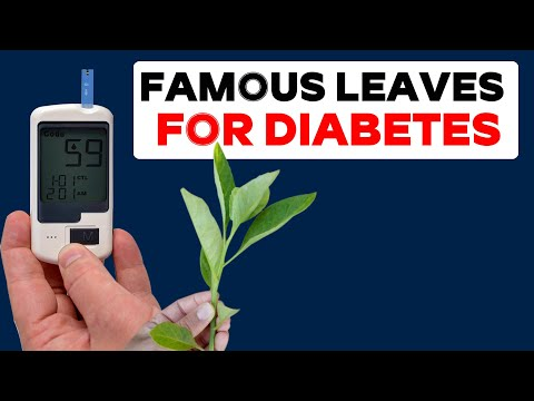 Famous Leaves For Diabetes