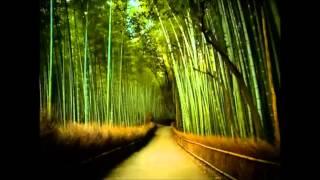 Oogway Ascends-Kung fu panda(Hanz Zimmer)