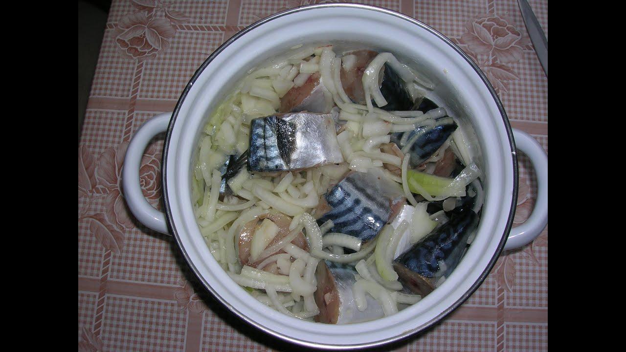 Солка скумбрии самый вкусный рецепт