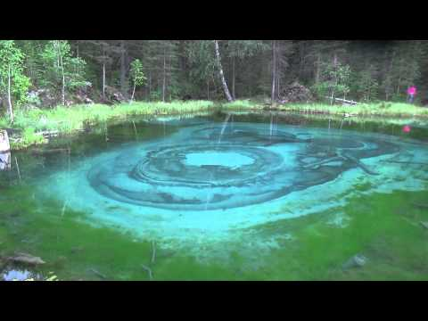 Купание в ледяной воде сказочного озера Алтая