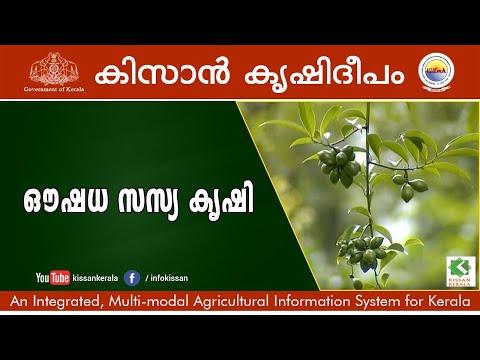Medicinal Plants, Kollam