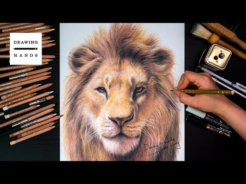 Drawing The Lion King - Simba [Drawing Hands]