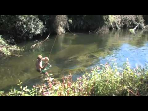 A dry fly story