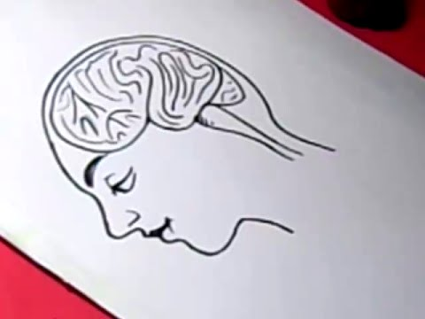 How to FEMALE BRAIN Drawing For Kids step by step - YouTube