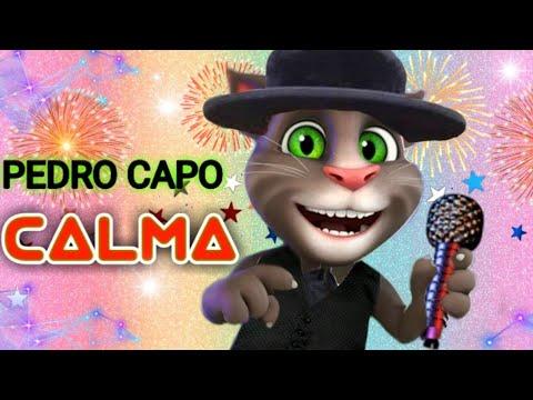 Calma vamos a la playa Pedro capo Farruko gato tom