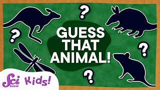 Animal Guessing Game! | Compilation
