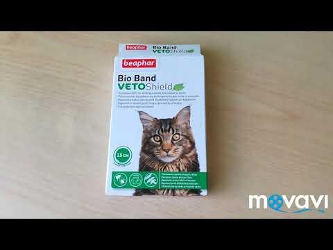 Вопрос: Почему кот снимает ошейник от блох?