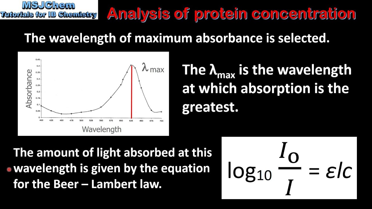 calculating protein concentration using protein standard curve essay Using this standard curve we can read the concentration for an unknown given its absorbance reading controls when we run an assay we must ensure that only the substance we are assaying is responsible for absorbance of light in the wavelength range of interest.