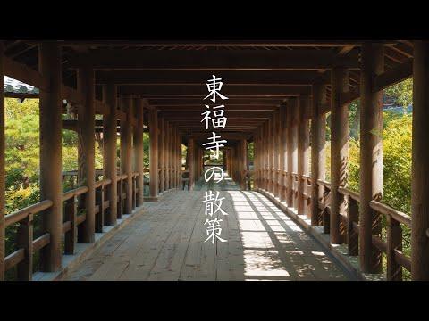東福寺の散策 : Walking Around Tōfuku-ji Temple(Kyoto, Japan)