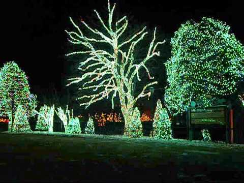 Toledo Zoo Lights Before Christmas - YouTube