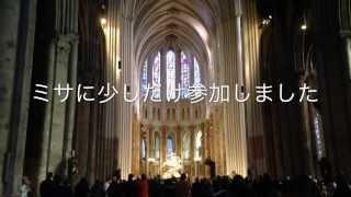 2014 シャルトル大聖堂