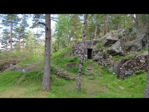 Skans 460 Parsetjärn 2015-06-24