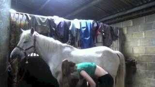 My Muddy Grey Pony.