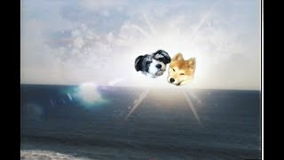 "Sufjan Stevens & Angelo De Augustine - ""Reach Out"" (Official Music Video)"