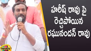 BJP Leader Raghunandan Rao Serious Comments On Minister Harish Rao | Telangana News | Mango News