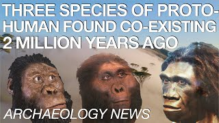 BREAKING NEWS - Three Ancient Hominid Species Discovered from Same Time Period in African Cave