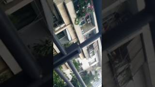 Siêu trộm đồ lót xuất hiện 3/7/2017