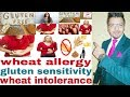 What is Wheat Allergy