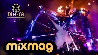 vuclip Arcadia Teaser: 'The Story of the Spider' - Switch On The Night by Olmeca Tequila & Mixmag