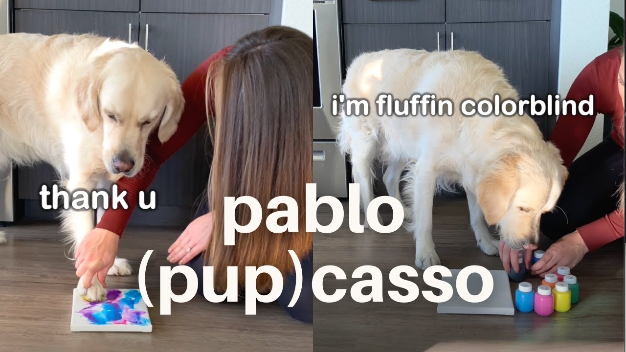Golden Retriever Tries Painting for the First Time