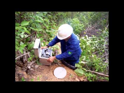 Petroleum Geoscientist
