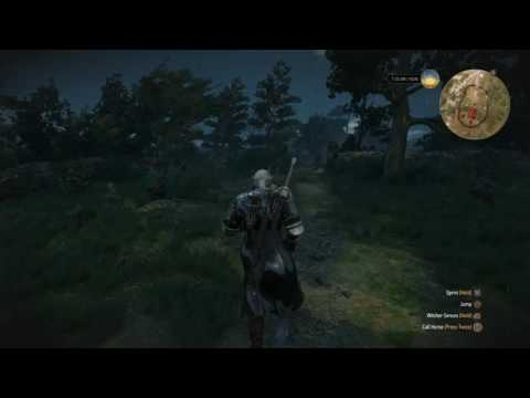 The Witcher 3: Wild Hunt Weeping Angels
