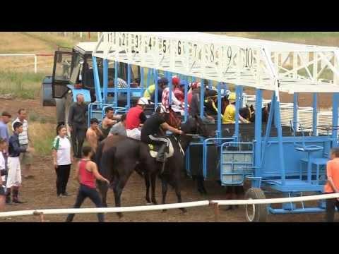 Скачки на лошадях Элиста 16 мая 2013г.  II заезд, 1600 метров