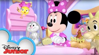 Pet Calendar | Minnie's Bow-Toons | Disney Junior