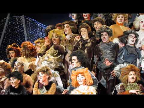 "Riverdale Children's Theatre Production of ""Cats."""