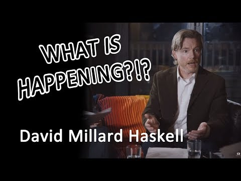 MATHEMATICS HAS A RACE???  David Millard Haskell