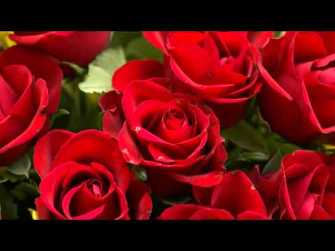 "(HD 720p) Jim Reeves Sings ""Roses,  I Send You Roses"""