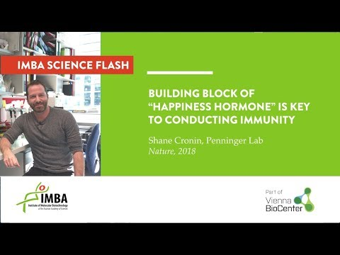 """Building block of """"happiness hormone"""" is key to conducting immunity"""