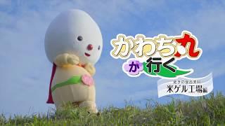 河内町PR動画「かわち丸が行く~米ゲル工場編~」