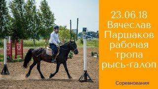 Рабочая тропа/ Вячеслав Паршаков и Старк / Дивные Кони