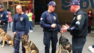 MTA POLICE OFFICERS TRAINING THEIR COUNTERPART K9 OFFICERS FOR FUTURE DEPLOYMENT AND DUTY.