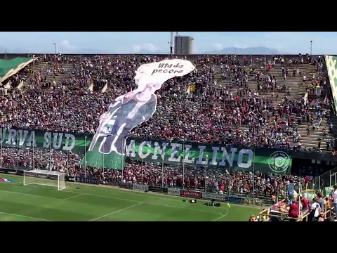 Salernitana - Avellino: coreografia Curva Sud e sfottò tra tifoserie prima della gara