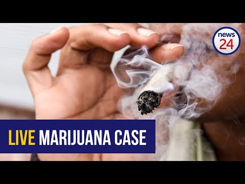 LIVE STREAM | Day 3: High Court bid to legalise marijuana