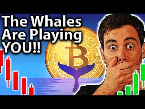 Crypto Market Manipulation! Wyckoff \u0026 WHALES!!🐋