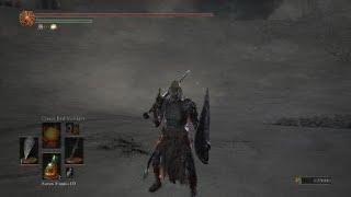 Onyx Blade & Demon Scar Pyro vs. Slave Knight Gael SL120 DARK SOULS 3