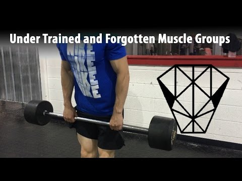 Muscle Groups Typically Under Trained or Forgotten ⎮Nate Stevens ⎮ColdBlooded Fitness