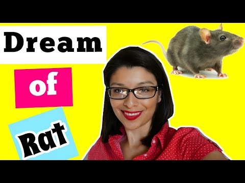 WHAT IS NEW! Rat Dream Meaning & Interpretation