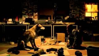 Wolfblood - Verwandlung bei Vollmond | Deutscher Trailer