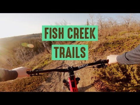 Fish Creek Biking // Trails In Southern Calgary
