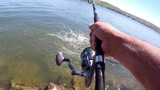 How To Catch Huge Catfish From The Bank
